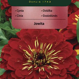 Ostálka sličná Jowita - červená (Vilmorin)