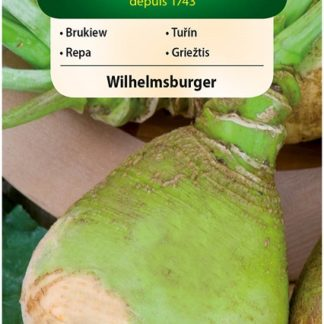 Tuřín Wilhelmsburger (Vilmorin)