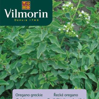 Řecké oregano (Vilmorin)