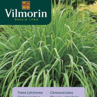 Citronová tráva (Vilmorin)