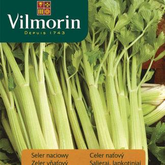 Celer naťový Nuget (Vilmorin)