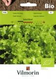 Salát listový Salad Bowl BIO
