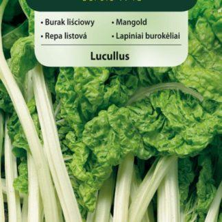 Mangold (listová řepa) Lucullus (Vilmorin)