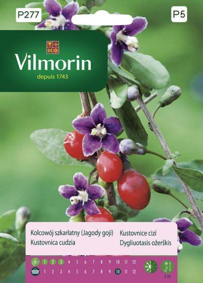Kustovnice cizí - goji (Vilmorin)