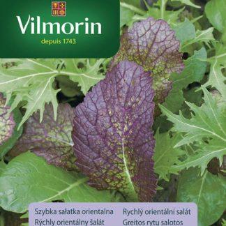Rychlý orientální salát - Fast oriental salad (Vilmorin)
