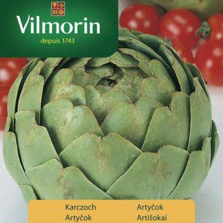Artyčok Green Globe (Vilmorin)