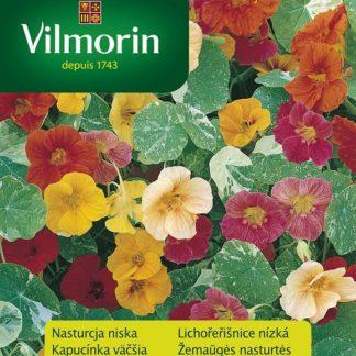 Lichořeřišnice nízká Alaska - směs (Vilmorin)