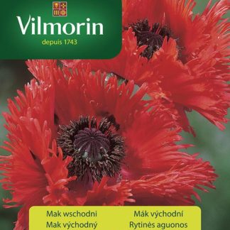 Mák východní Beauty of Liwer - červený (Vilmorin)
