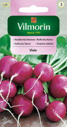 Ředkvička Viola (fialová)