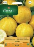 Okurka salátová a nakladačka Lemon (žlutá)
