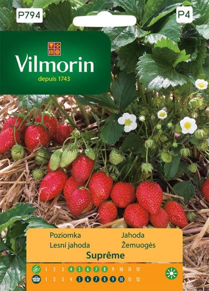 Lesní jahoda Supreme (Vilmorin)