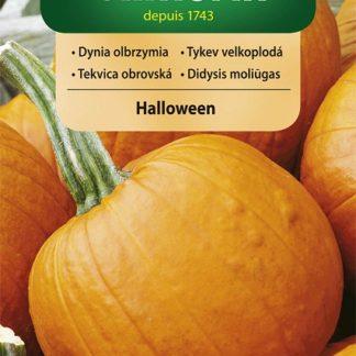 Tykev velkoplodá Halloween (Vilmorin)