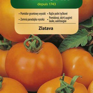 Rajče polní tyčkové Zlatava - oranžové (Vilmorin)