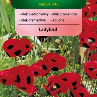 Mák proměnlivý Ladybird - červený (Vilmorin)