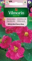 Lichořeřišnice větší Whirly Bird Cherry Rose (růžová)