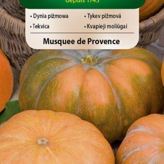 Tykev pižmová Musquee de Provence (Vilmorin)