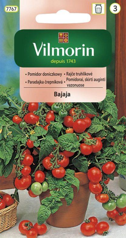 Rajče truhlíkové Bajaja (Vilmorin)