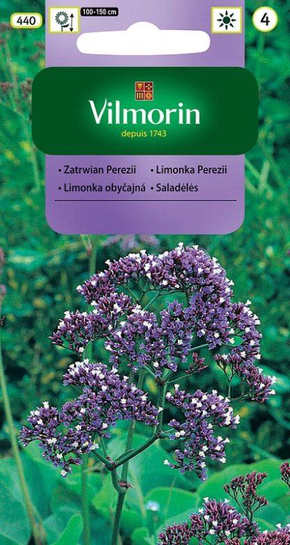 Limonka Perezii - fialovo-bílá (Vilmorin)