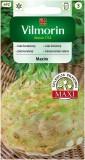 Celer kořenový Maxim