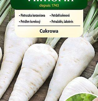 Petržel kořenová Cukrowa - obalovaná semena (Vilmorin)
