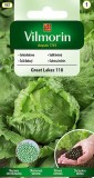 Salát ledový Great Lakes 118 (obalovaná semena)