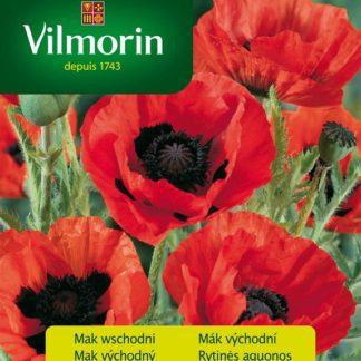 Mák východní Allegro - červený (Vilmorin)