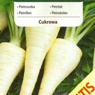 Petržel kořenová Cukrowa, o 50 % navíc (Vilmorin)