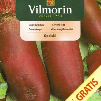 Červená řepa Opolski, o 50 % navíc (Vilmorin)
