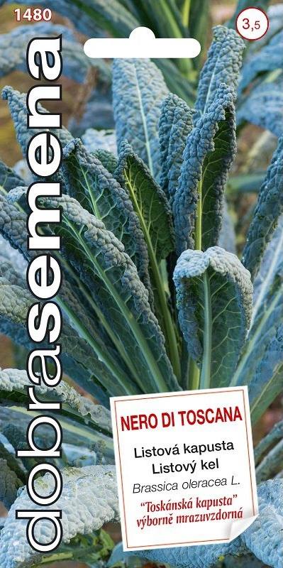 Listová kapusta Nero di Toscana - mrazuvzdorná (Dobrásemena)