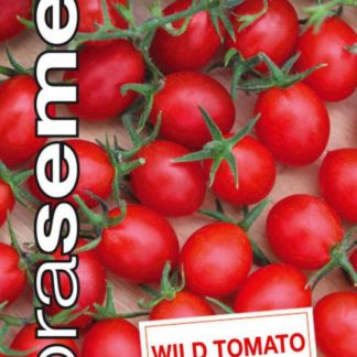 Divoké rajče Wild Tomato - rybízové (Dobrásemena)