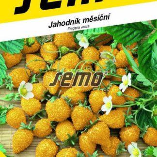 Jahodník měsíční Yellow Wonder - žlutý (Semo)