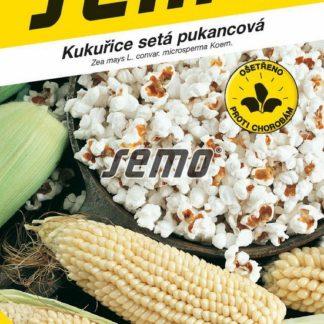 Kukuřice setá pukancová Jantár F1 (Semo)