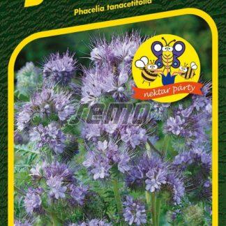 Svazenka vratičolistá Protana - modrofialová (Semo)