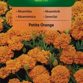Aksamitník rozkladitý Petite Orange - oranžový (Vilmorin)