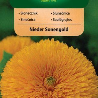 Slunečnice plnokvětá Nieder Sonengold - zlatožlutá (Vilmorin)