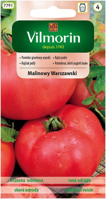 Rajče polní Malinowy Warszawski (Vilmorin)