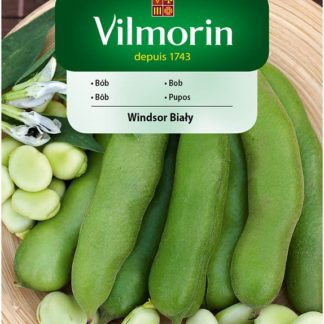 Bob Windsor Bialy (Vilmorin)