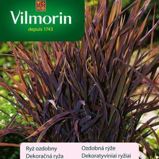 Ozdobná rýže Black Madras (Vilmorin)
