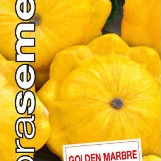Patizon (tykev obecná) Golden Marbre - zlatožlutý (Dobrásemena)