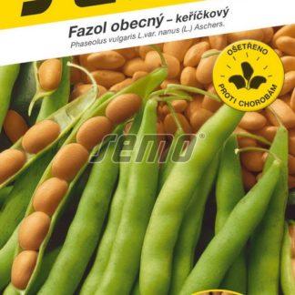 Fazol obecný Nugetka - keříčkový, na suché semeno (Semo)