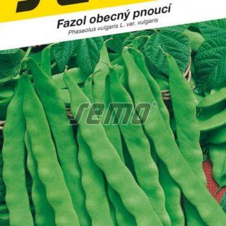 Fazol obecný Supermarconi Limca - pnoucí, na lusky, zelený (Semo)