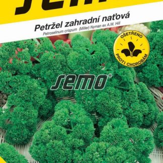 Petržel zahradní naťová Kadeřavá (Semo)