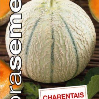 Cukrový meloun Charentais (Dobrasemena)