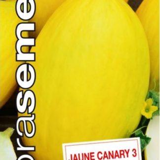 Meloun cukrový Jaune Canary 3 (Dobrasemena)