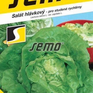 Salát hlávkový Safír - pro studené rychlírny (Semo)