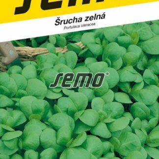 Šrucha zelná Green Purslane (Semo)