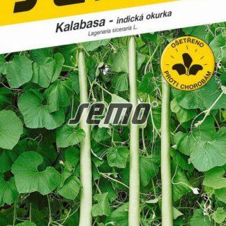 Kalabasa - indická okurka (Semo)