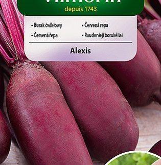 Červená řepa Alexis - obalovaná semena (Vilmorin)