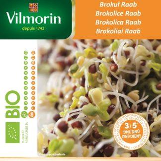 Brokolice Raab - BIO semena na klíčky (Vilmorin)