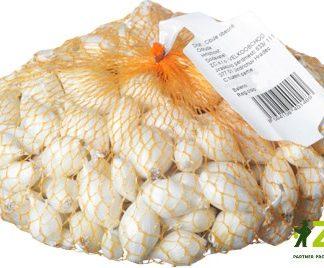 Cibule sazečka Snowball - bílá, 250 g (ZC)